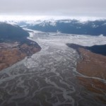 The Stikine River Delta, as seen from the air. (Ed Schoenfeld, CoastAlaska News.)