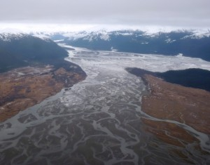 The Stikine River Delta, as seen from the air. (Ed Schoenfeld, CoastAlaska News.)