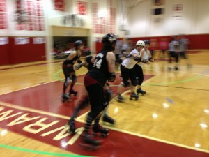 Garnet Grit Betties in the pack - Photo by Shady Grove Oliver/KSTK