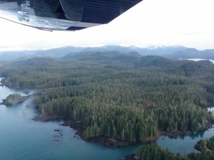 Northern Prince of Wales Island near Point Baker (KFSK file photo)