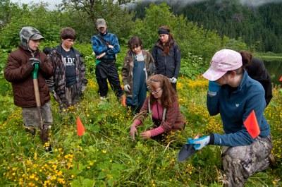 Boy Scouts tackle trash, invasive plants