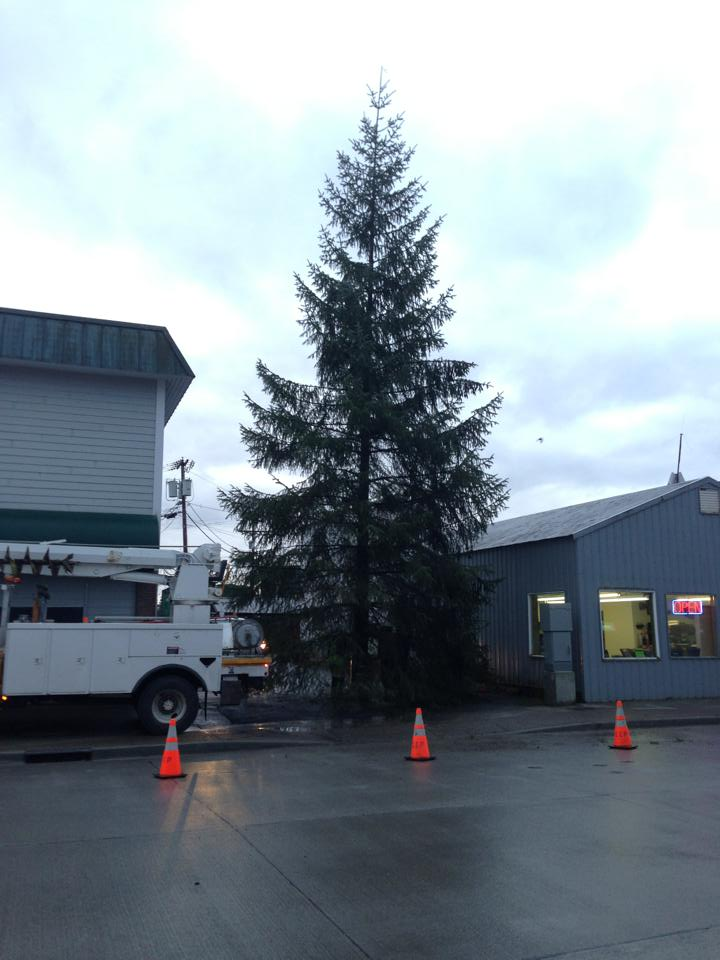 Three-story spruce this year's town Christmas tree