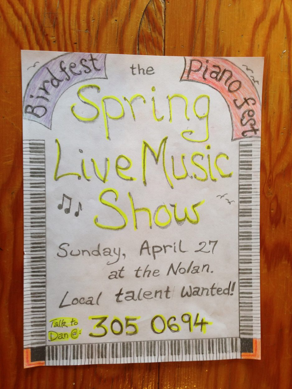 Spring live music event showcases local artists