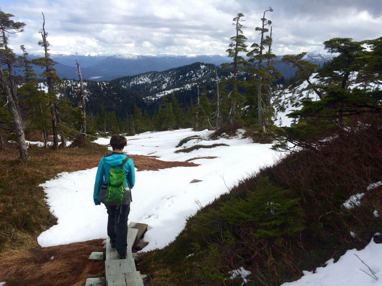 Wrangell hosts workshop to better understand forest management