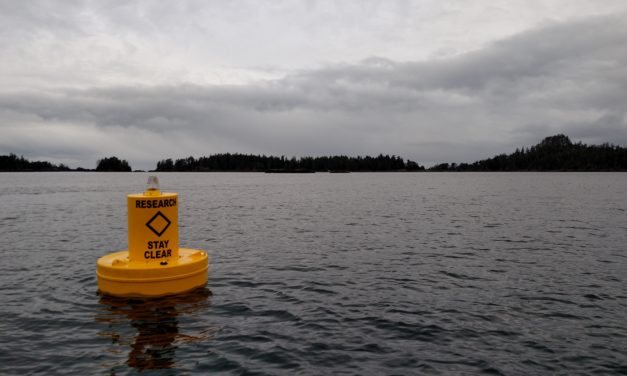 Ocean acidification in Southeast, tribal network seeks regional impact